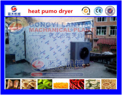 Cassava chips dryer machine
